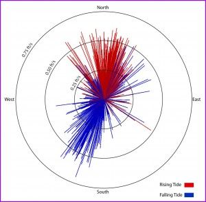 CORMIX Tidal Flow Rose Diagram